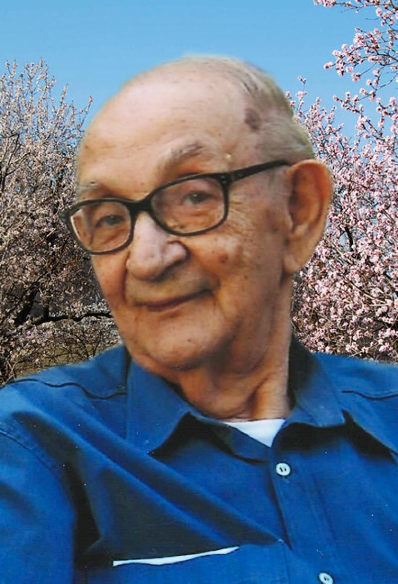 Elia Cominato