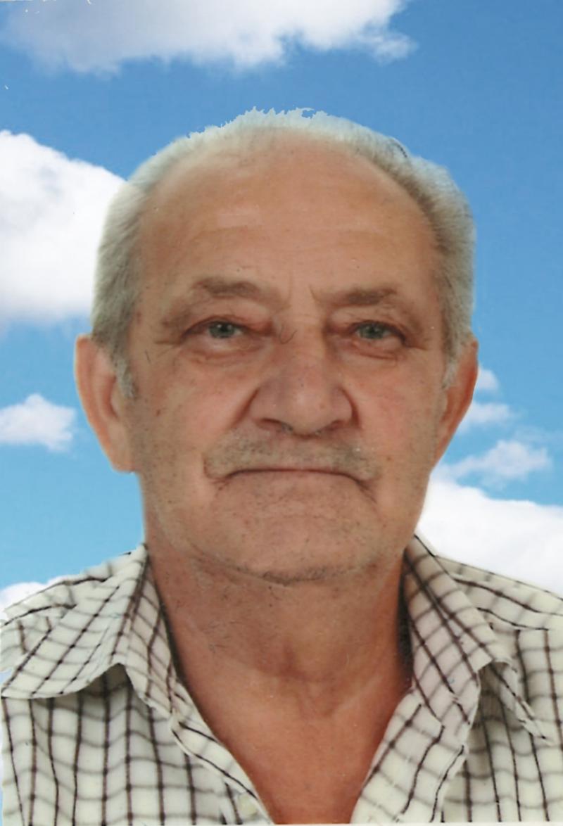 Lino Vincenzo Naldi
