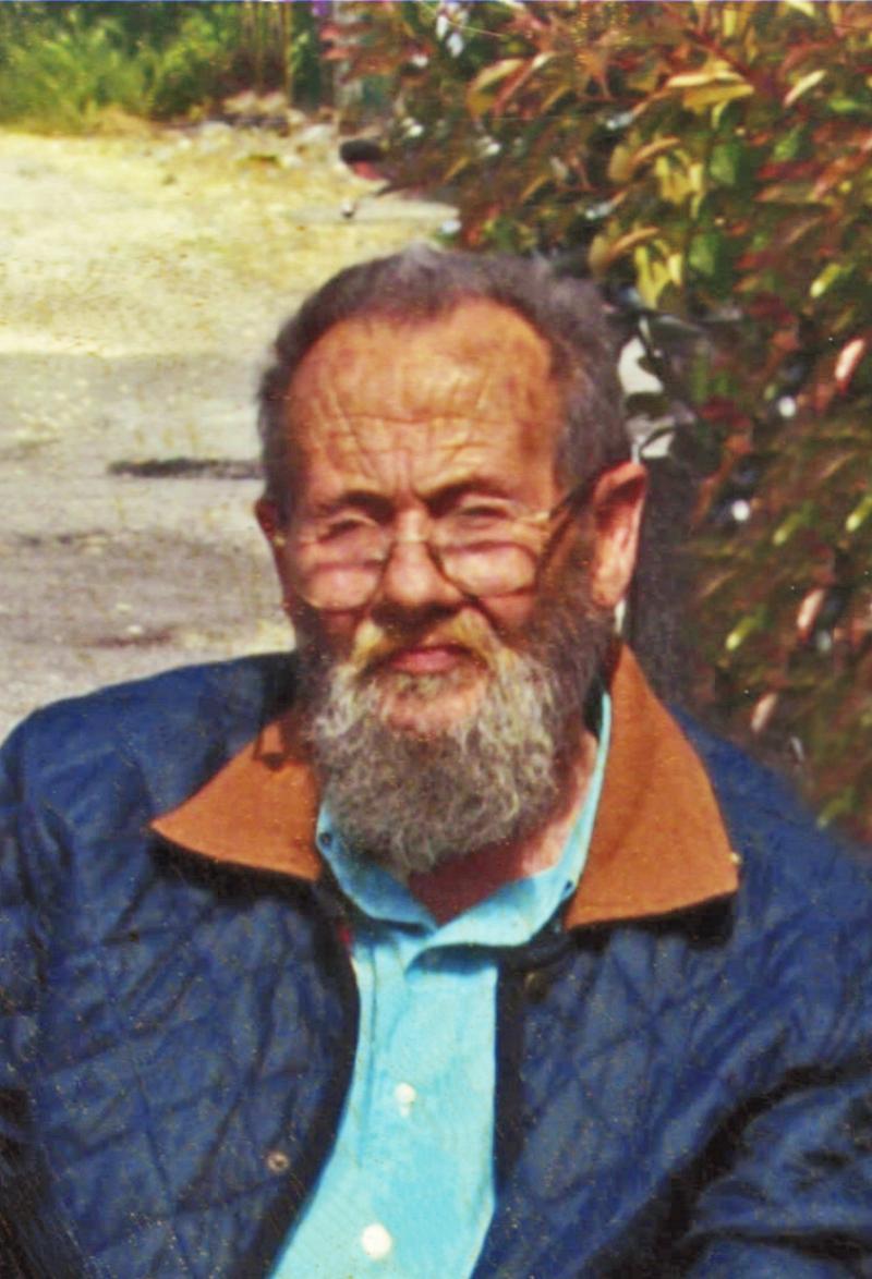 Dario Gottardi